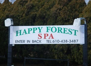 happy ending massage reading pa Bathurst