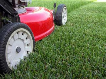 mow_your_lawn