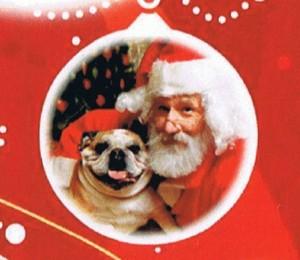 Pet Photos With Santa @ Pet Supplies Plus | Easton | Pennsylvania | United States
